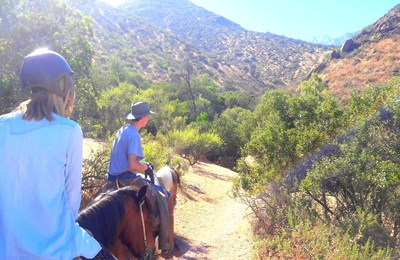 Horseback riding Tour - Andes Foothills
